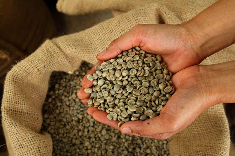 Zelena kafa - novi način mršavljenja