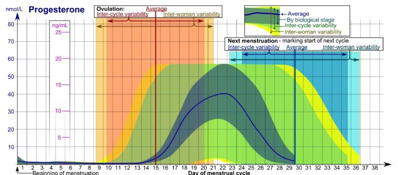 Proces ovulacije